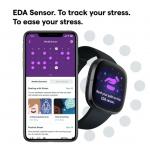 Fitbit Sense | Carbon & Graphite